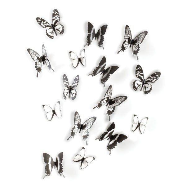 umbra chrysalis.1524005851