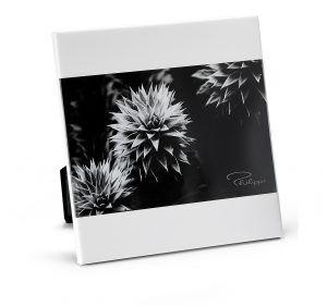 """PHILIPPI Рамка за снимки """"ZAK"""" - 13х18см - цвят бял"""