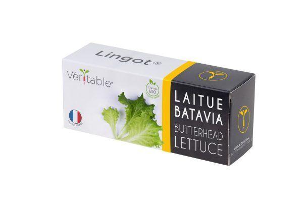 VERITABLE Lingot® Butterhead Lettuce Organic - Маруля