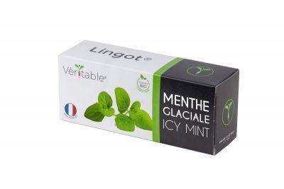 VERITABLE Lingot® Icy Mint Organic - Ледена Мента